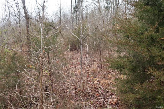 0 9.04 Acres - Dittmer  Road -5
